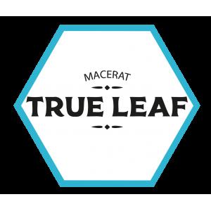 Gamme True Leaf | Starvap
